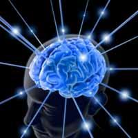 Est-il possible de stimuler la mémoire? 2422985090-le-cerveau-pourrit-partir-de-27-ans