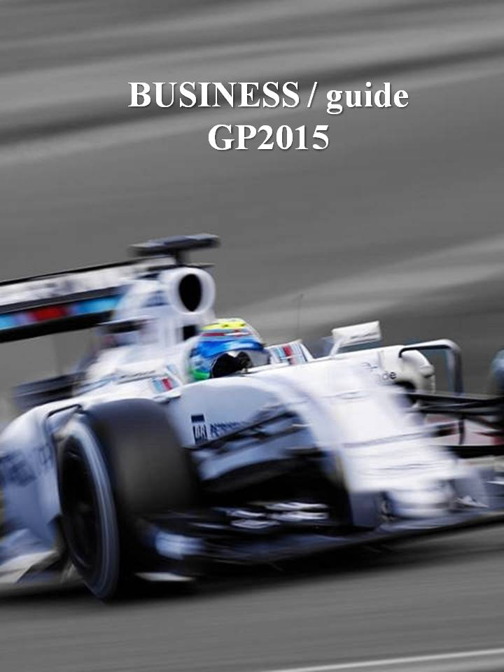 Businessguide2015